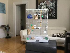 À Vendre Cage d'oiseaux VISION Bird cage