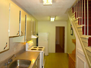 Central large two bedroom basement