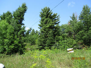 Mountain top - 5 acres - undeveloped