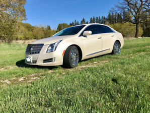Cadillac PLATINUM in mint condition for sale