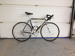 Specialized 18 Speed Carbon Fibre Bicycle