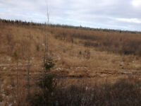 HUNT CAMP ACREAGE LAND, MOOSE & DEER IN ABUNDANCE + CAMP 3 BEDS