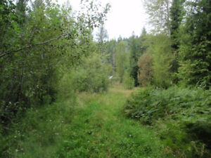 10 Acre Wilderness Property in Fruitvale, BC