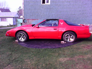 "1991 Firebird  T-Top "" project""car..will take a reasonable offer"