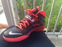 Almost new LeBron James shoes