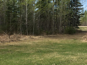 CALLING LAKE LOT FOR SALE
