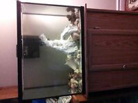 saltwater tank with clownfish