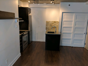 Beautiful Griffintown condo 3 1/2