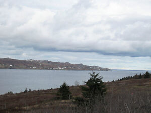 296 Central St in Bay Roberts,NL - MLS 1114529 St. John's Newfoundland image 10