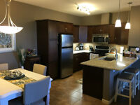 Terwillegar Condo for rent: Quiet, bright and upgraded.