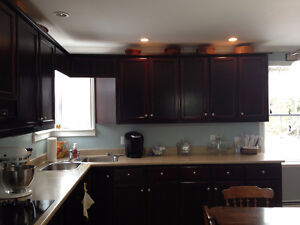 Kitchen cabinets and countertops for sale!