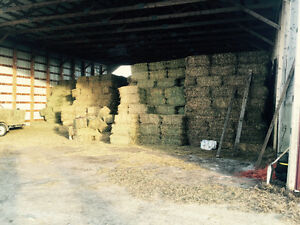 First/Second Cut Small Square Bales - Mixed Hay