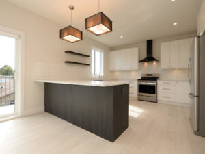 TWO HOMES IN ONE! Brand New Home with 2 Suites and Mt Doug View!