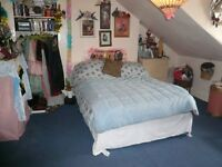 **Large single bedsitting room with double bed in Victorian building in Finsbury Park!! **