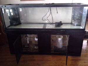 125 gallon fish tank with overflows, sump, refugium, stand