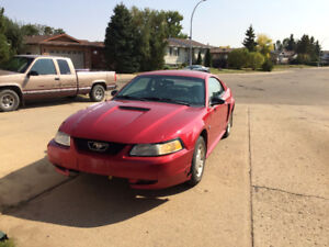 1999 Ford Mustang 35th Anniversary Edition Coupe (2 door)