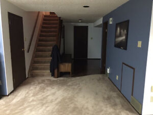 Bright & Spacious Basement Suite with Attached Garage