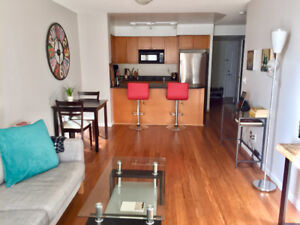 Fully Furnished King West Sublet w/ Parking (February 1-28)