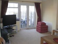IMMACULATE 3 bedroom house for rent