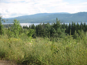8.8 acres with Lake and Mountain views