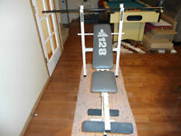 BENCH PRESS WITH 165LB OF WEIGHTS