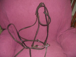 Bridle, Bit and Reins