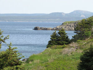 BACON COVE RD, AWESOME OCEAN VIEWS..BACON COVE.. St. John's Newfoundland image 2