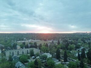 **** 16th floor condo in Glenora! Fully renovated! **** Edmonton Edmonton Area image 8