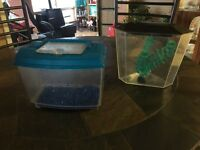 2- 1 gallon fish tanks