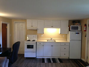 Modern & All Inclusive 1 BR Basement apt avail Nov 1 or Dec 1