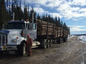 iso  8ft6 shortlog truck bunks