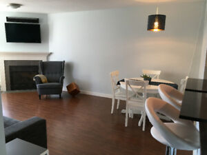 Executive Furnished 1bd with City Views