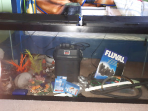 60 gallon fish tank with everything. Open to offers!