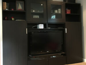 TV Stand Shelf Cabinet Storage ( Toshiba LCD TV Included)