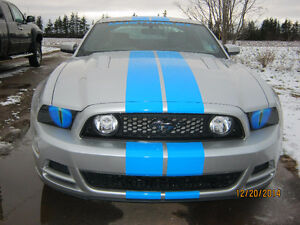 make your mustang stand out, Dortch Eyeballs fit 2010 and up