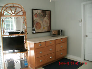 Sunny, fully furnished, 1 bedroom apartment!!