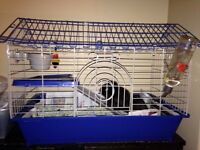 Guinea pig and deluxe cage