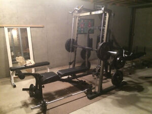 Nautilus NT-SM1 home gym & Apex chin up tower