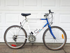 Inexpensive Basic Taller Adult Bicycles
