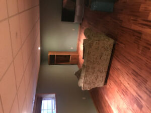 Huge basement and Great location