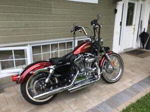 2013 Harley Davidson