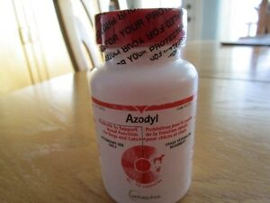 Probiotique Azodyl