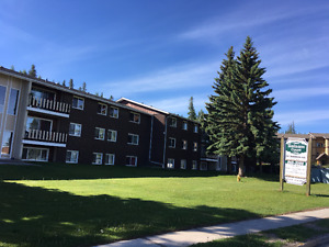 Huge 1 BD , apartment, pet friendly, quiet building.Hinton