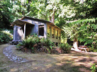 2 ACRES WITH CABIN & OCEAN VIEWS! (Pender Island)
