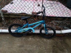"Norco kids bike with 16"" tires."
