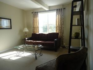 Furnished Downtown Suite