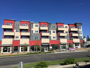 New 2 BR Condo Close to Downtown- Excellent Central Location