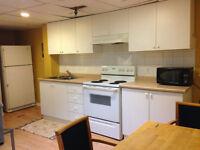 Separate entrance Basement apartment for rent-Richmond hill