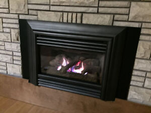 Valor NatGas Radiant Fireplace Insert with fan & remote control