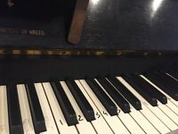 I need a experienced piano teacher for my 2 kids